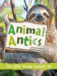 Animal antics : the silly things animals do